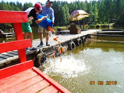 Рыбалка на золотых рыбок в Екатеринбурге