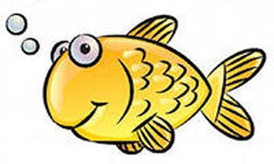 Рыбалка на Калиновке соревнования