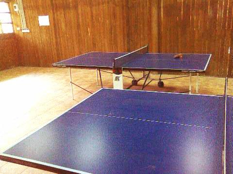 аренда теннисных столов на калиновке