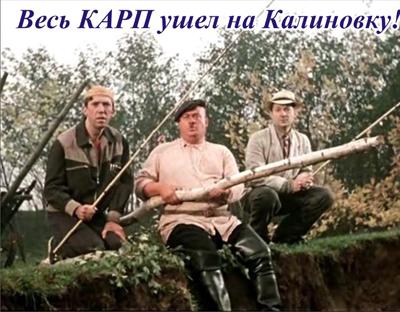 Весь карп ушел на Калиновку